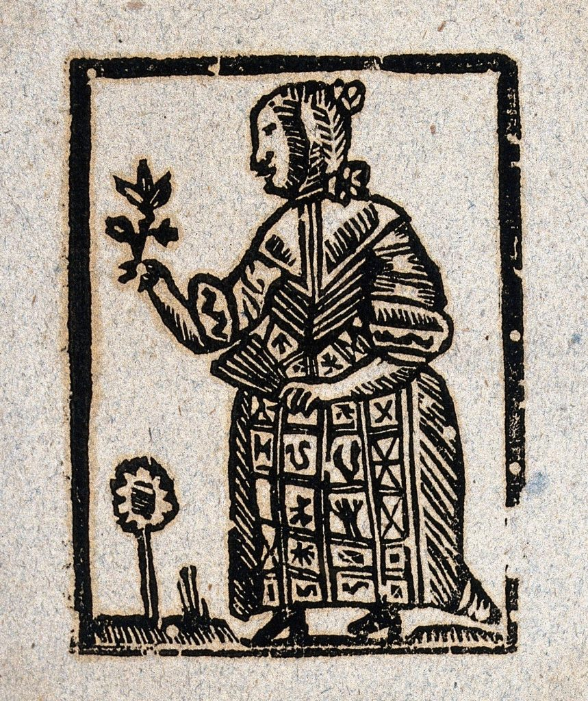Woodcut of a witch holding a plant in one hand and a fan in the other illustrating the witchcraft section of HBI IV.